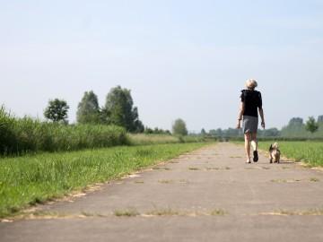 Vrouw wandelend met hond